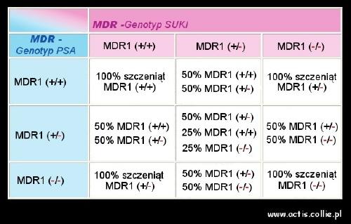 Tabela mdr1